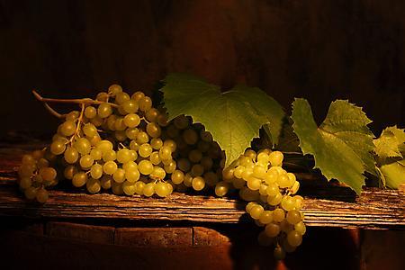 Заставки виноград, гроздь, листья