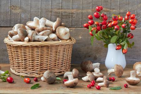 Картинки грибы, шиповник, боярышник, корзина