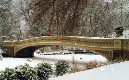 Фотографии Central Park, New York, Нью Йорк, центральный парк