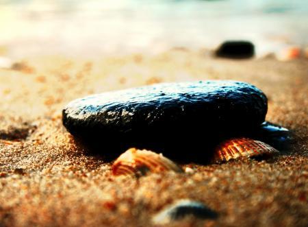 Фотографии макро, пляж, песок, камни