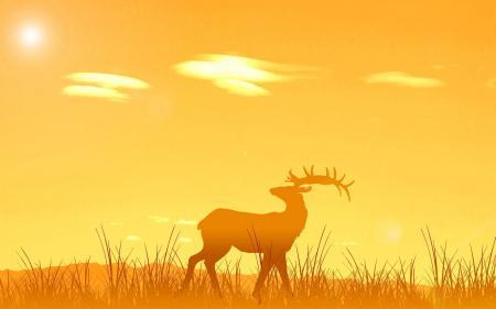 Картинки олень, закат, восход, солнце