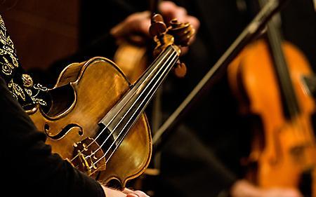 Обои скрипка, струны, рука музыканта, 1920x1200 px
