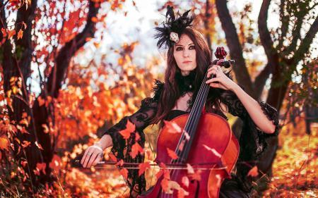 Картинки виолончель, девушка, музыка