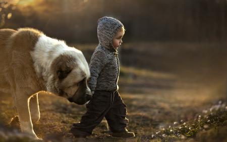 Обои мальчик, собака, настроение