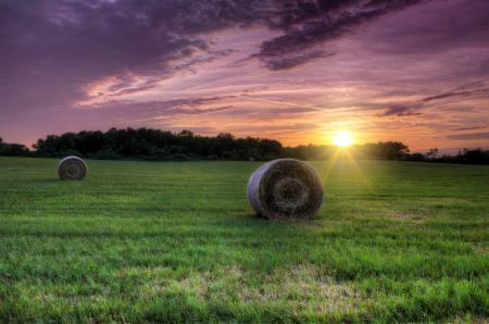Фото поле, трава, сено, солнце