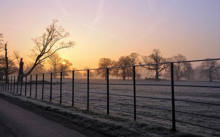 Обои утро, поле, забор, туман