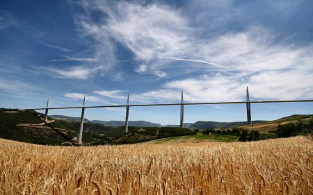 Фотографии мост, пшеница, поле, Виадук Милау
