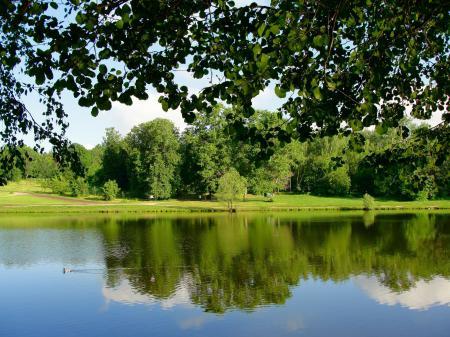 Заставки парк, пруд, деревья, ветки