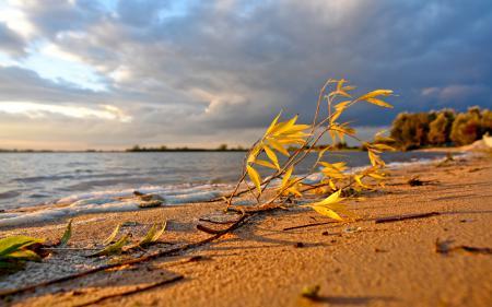 Обои пейзажи, природа, фото, берег