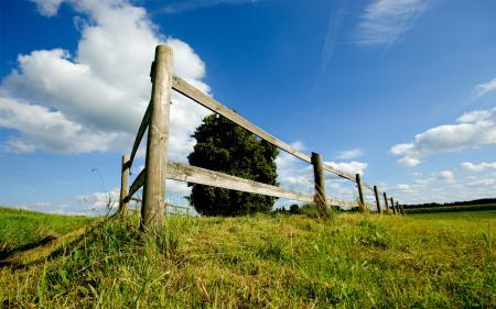 Обои пейзажи, обои, трава, забор