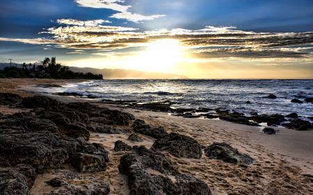 Картинки камни, море, закат, деревья