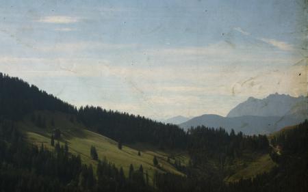 Фото пейзажи, креатив, деревья, леса