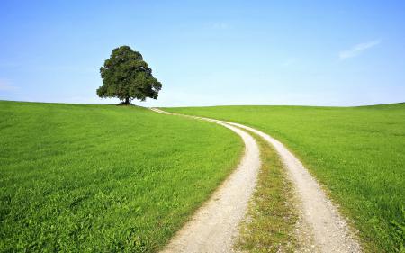 Обои пейзажи, природа, холмы, деревья