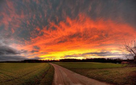 Обои пейзажи, природа, дорога, поле