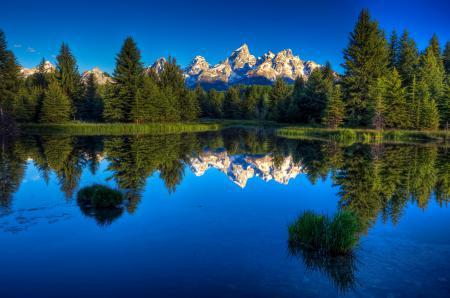 Обои гора, небо, отражение, лес