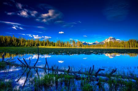 Фотографии небо, озеро, лес, дерево