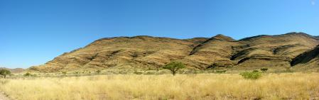 Обои Природа, Африка, Africa, Деревья