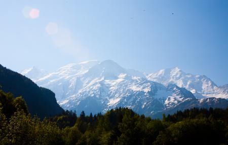 Фото горы, лес, небо, птицы