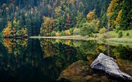 Фотографии вода, озеро, камень, деревья