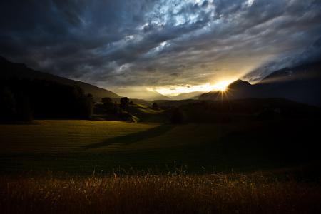 Фото поле, холмы, деревья, солнце