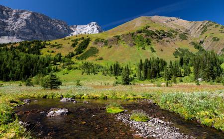 Фотографии пейзаж, природа, горы, зелень