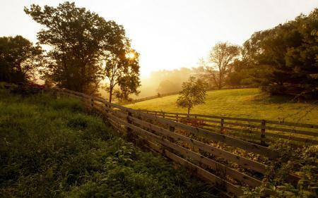 Фото закат, забор, природа, пейзаж