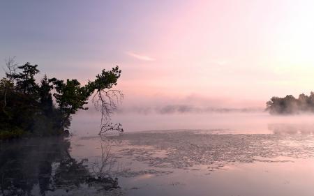 Заставки утро, озеро, туман, природа