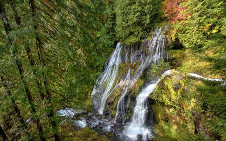 Фотографии водопад, лес, пейзаж