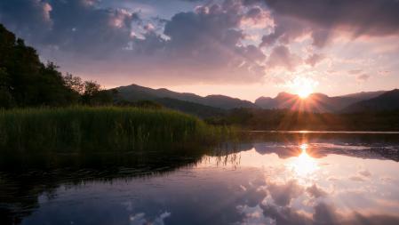 Картинки закат, солнце, водоем, лес