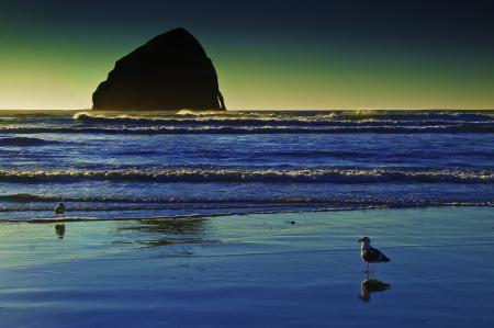 Обои море, берег, пляж, скала