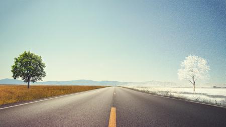 Заставки дорога, дерево, небо, горизонт