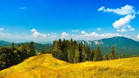 Заставки пейзаж, природа, зелень, горы