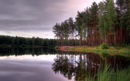 Обои озеро, закат, лес, природа