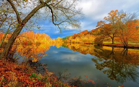 Картинки озеро, осень, природа, пейзаж
