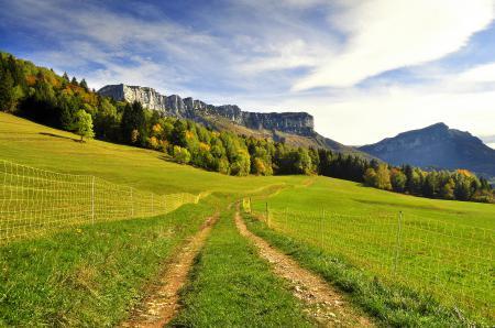 Фото горы, дорога, зелень, забор
