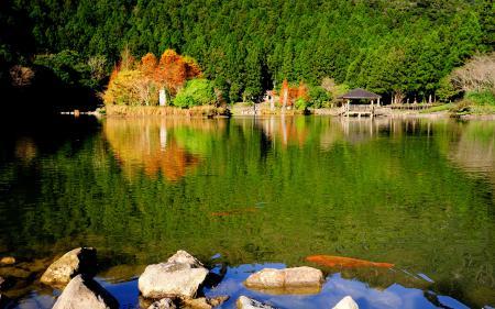 Обои озеро, камни, природа, парк