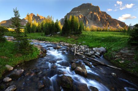 Картинки речка, горы, деревья, камни