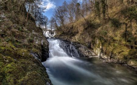 Фото река, лес, весна, природа