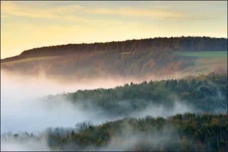 Фото осень, холмы, лес, туман