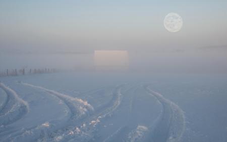 Фотографии зима, поле, туман, пейзаж
