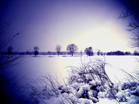 Обои небо, горизонт, зима, снег