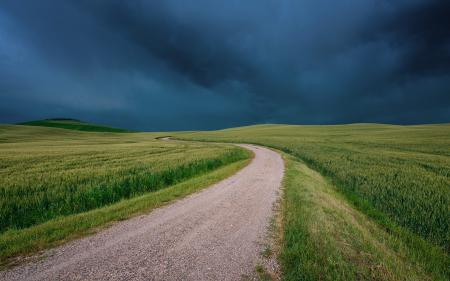 Заставки поле, трава, дорога, тучи