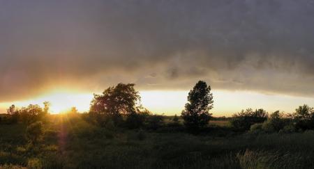 Фотографии пейзажи, фото, природа, деревья