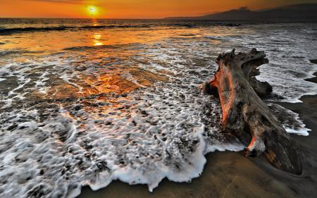 Фото море, закат, бревно, пена