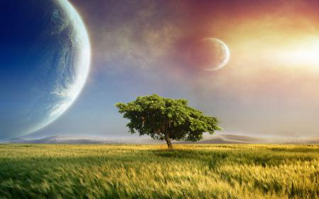 Фото Fantasy landscape, green grass, tree, planets