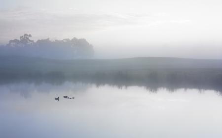 Заставки утро, небо, облака, туман