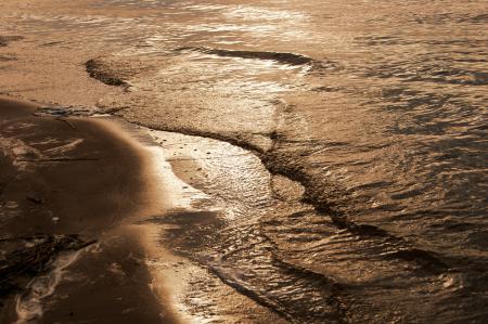 Обои волны, берег, ветки, песок