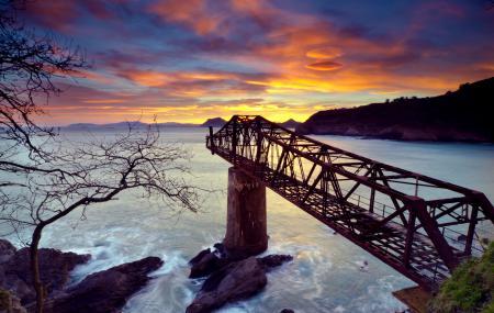 Фото мост в никуда, море, скалы, дерево