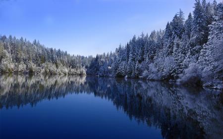 Фотографии Природа, лес, озеро, снег
