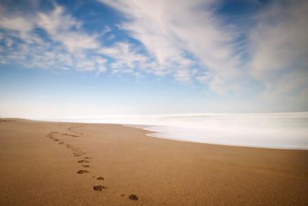 Картинки берег, песок, горизонт, следы